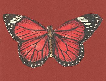 butterflyRed2.jpg