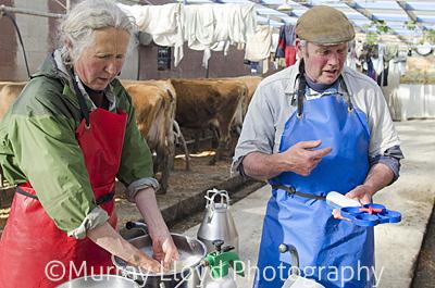 Dairyfarm_0096.jpg