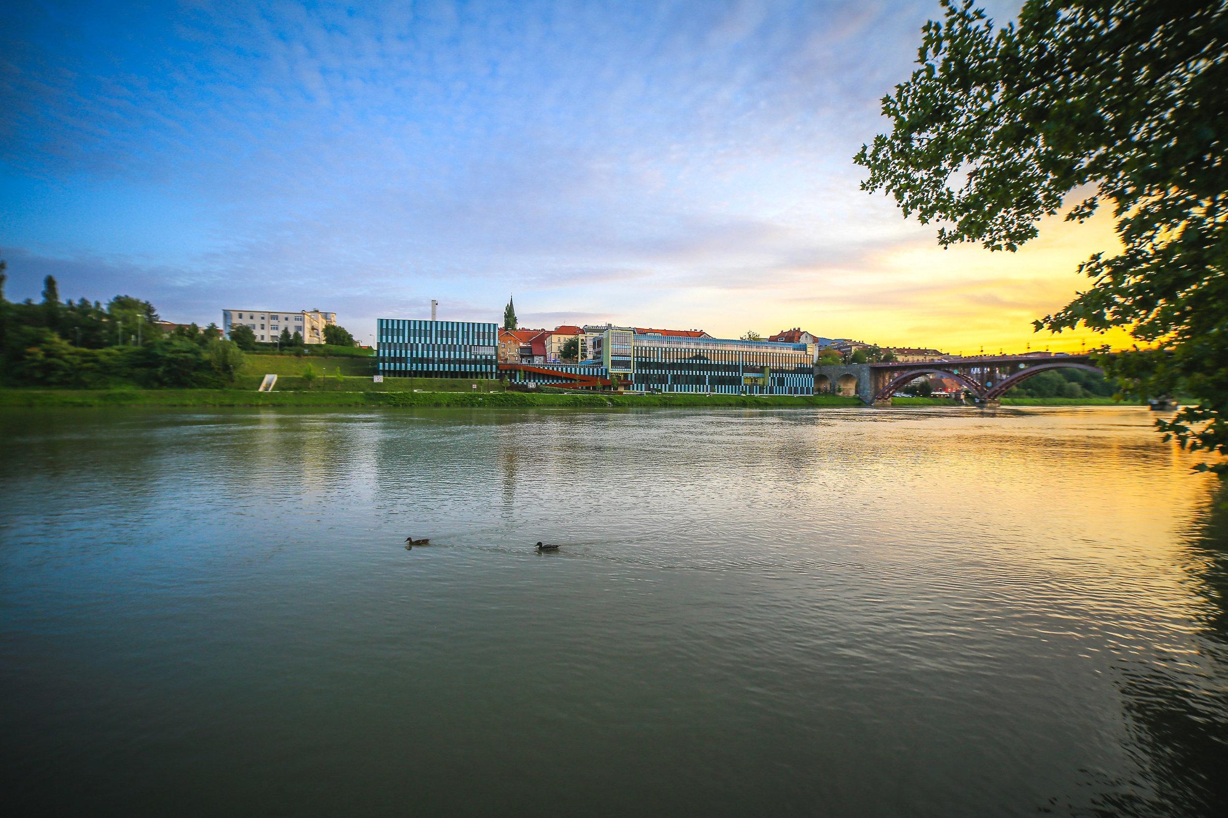 Medicinska fakulteta   Canon 5D; Samyang lens; avgust 2017