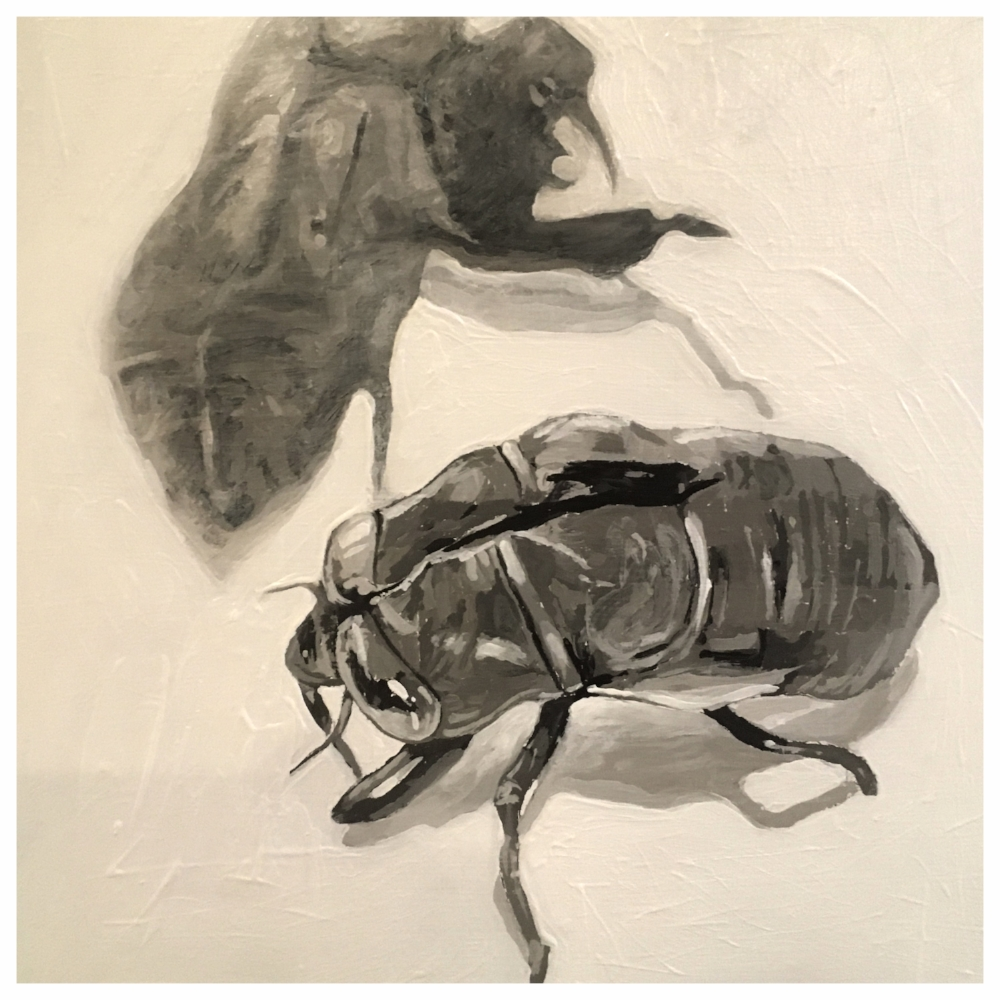 Cicada - Acrylic on board