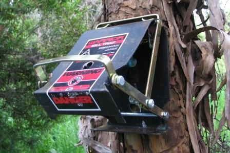 warrior-trap-set-on-tree.jpg