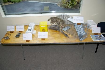 smaller-trapping-display-from-10th-anniversary.jpg