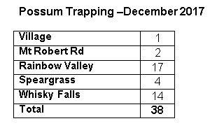 Possum Trapping Dec 2017.JPG