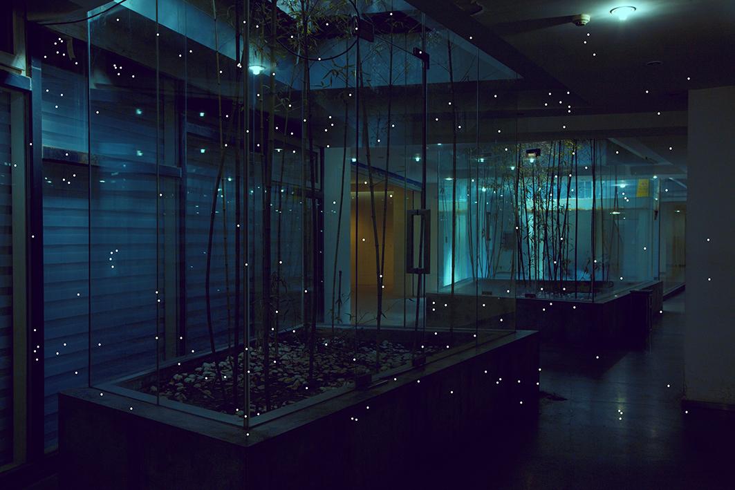 陈卓,《想象霓虹灯》,2016。图片由艺术家提供
