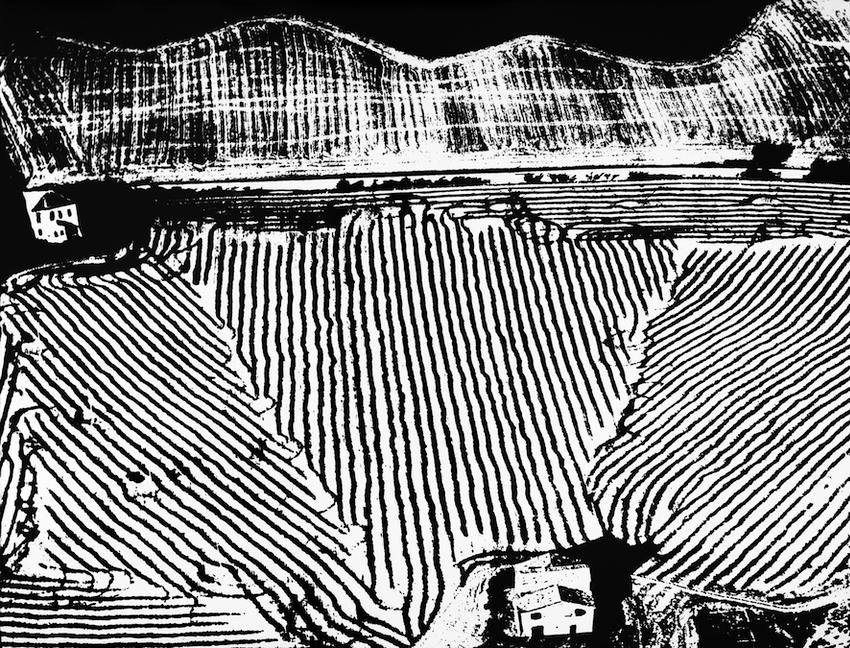 马里奥·贾科梅里,论意识到自然。1980s,明胶银版工艺,29.5 x 39.6厘米。©马里奥·贾科梅里收藏 - 丽塔·贾科梅里。由首尔摄影博物馆提供。