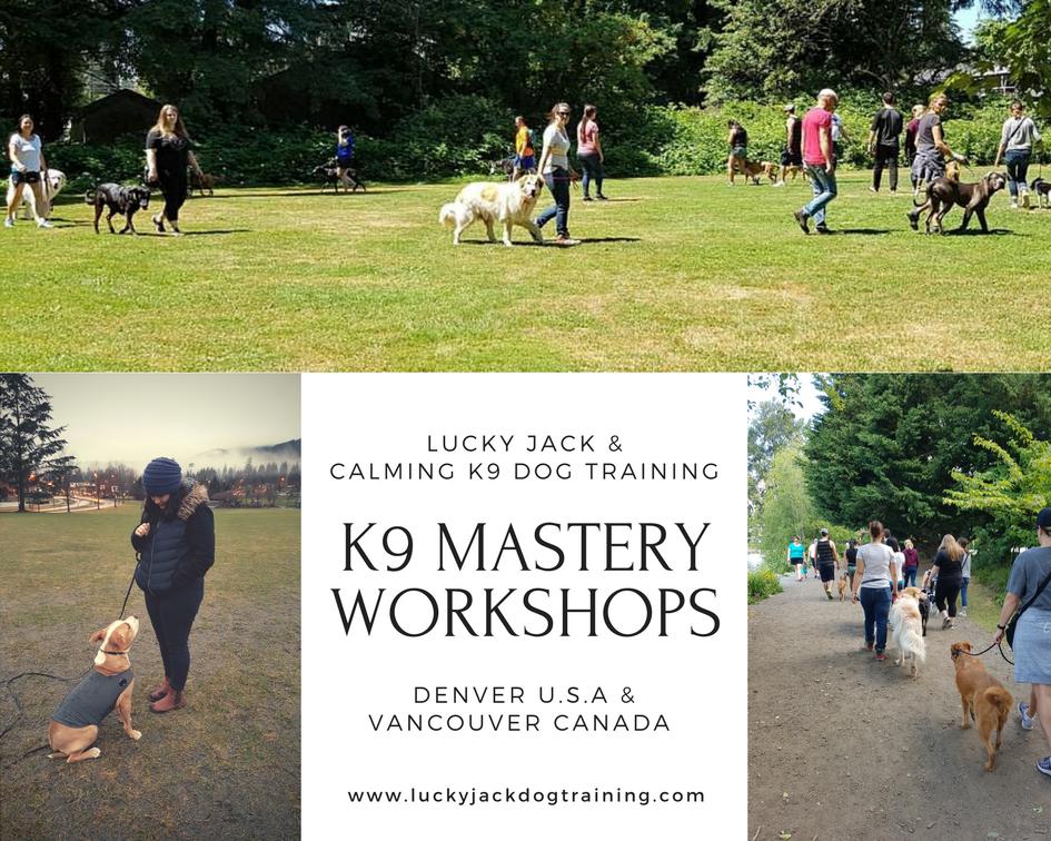 k9 mastery workshops.png