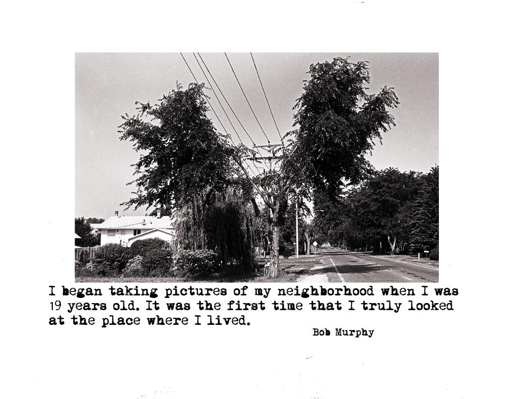 4.Tree And Power Lines Roselawn Avev.2v.2.jpg