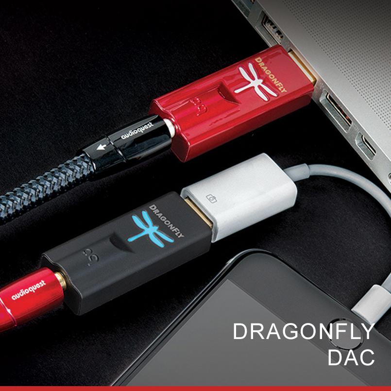 dragonfly-header.jpg