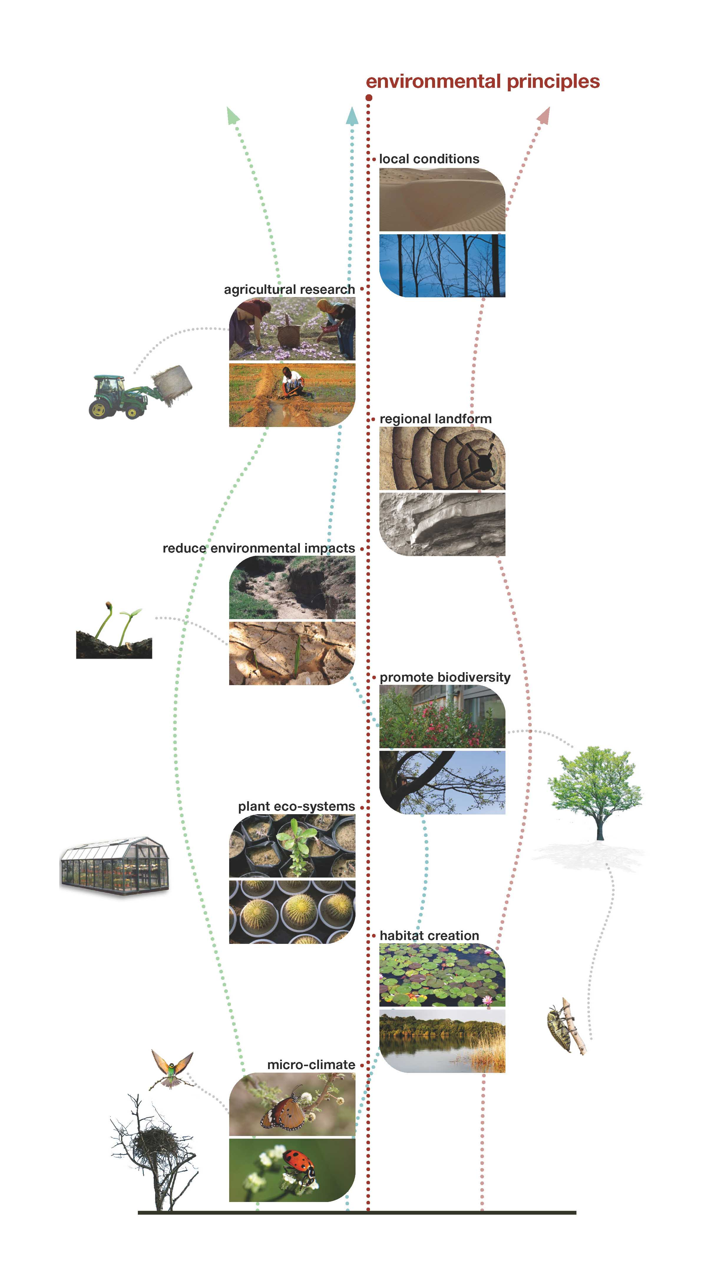 Sustainable diagramstreched cropped.jpg