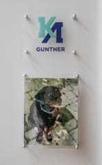 Students at the Kenzie Academy are assigned a room, and they can name it after a loved one. In this case a pet named Gunther. (Photo: Michelle Pemberton/IndyStar)