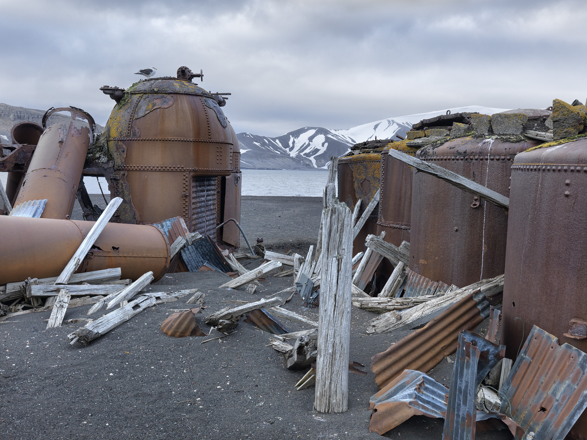 Boilers from The Whaling Industry, Deception Island, Antarctica 2016