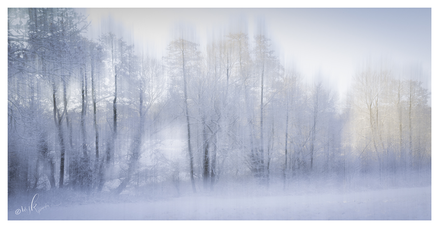 Just a short walk from my house I found myself in 'Narnia' at sunrise. The warm light gently kissed the tops of the trees and a little ICM added to the magic.