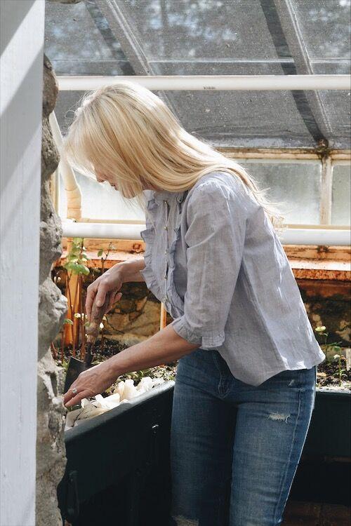 sandra sigman les fleurs backyard gardening tips