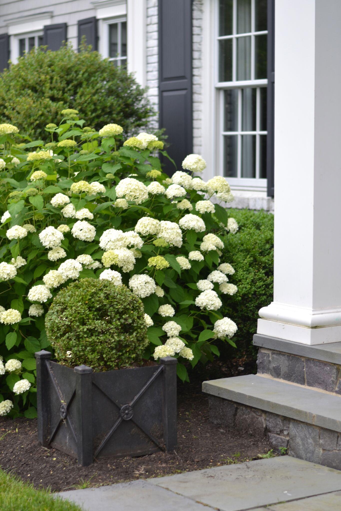 les-fleurs-home-gardening-benefits-floral.jpg