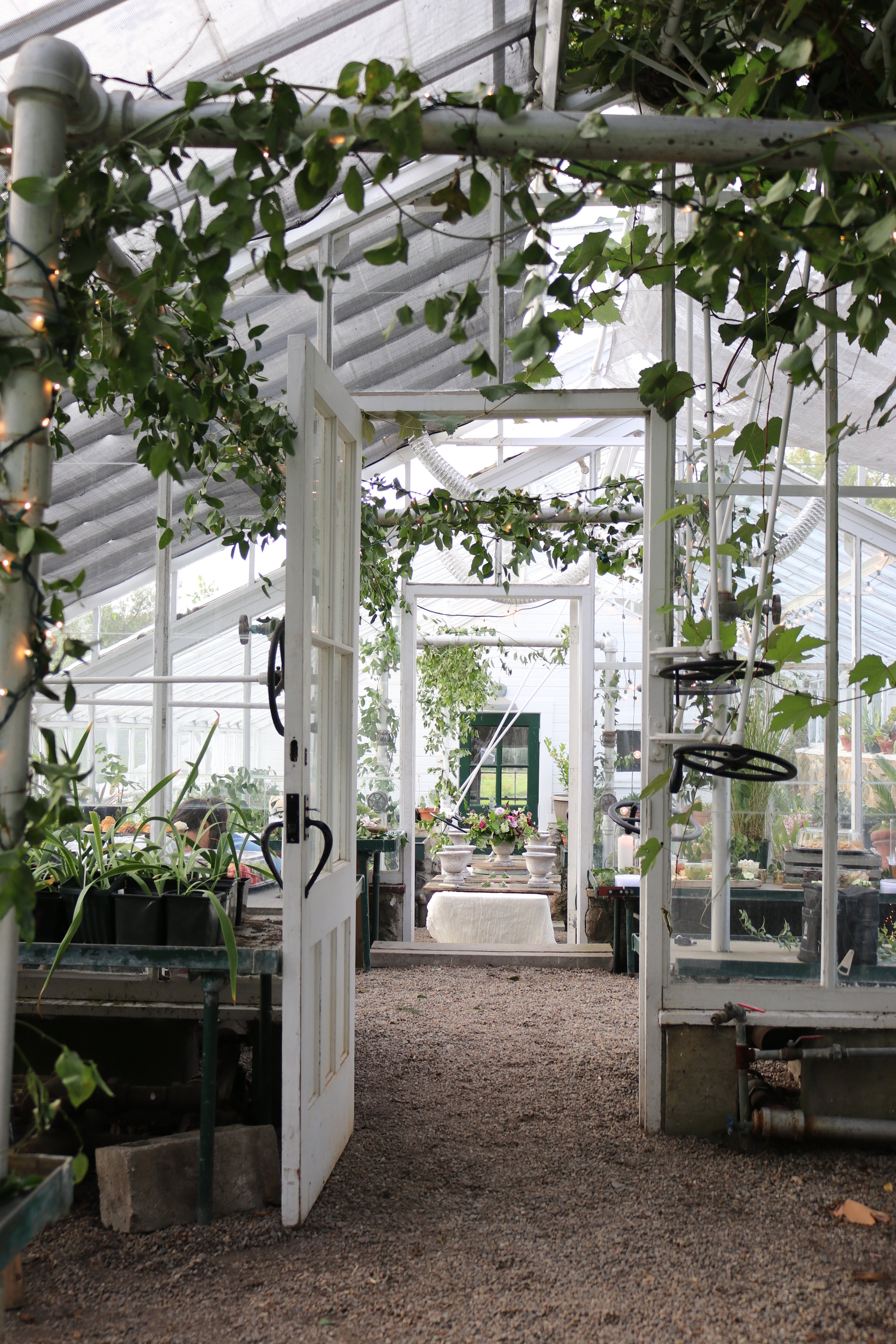 Stevens-Coolidge Estate greenhouse flower workshop