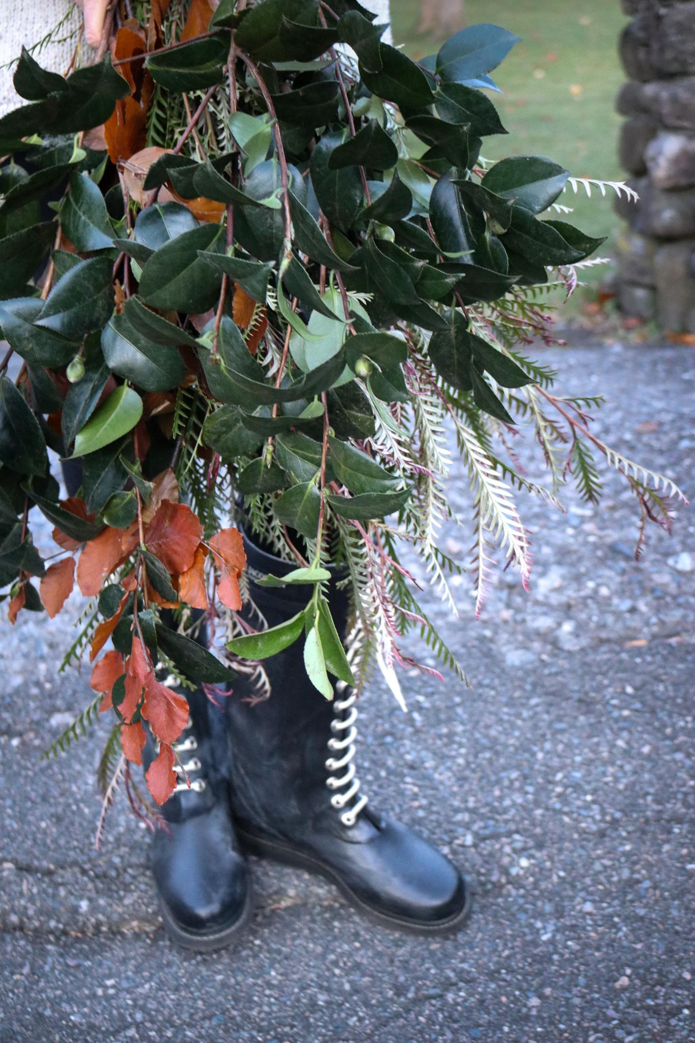 holiday foliage magnolia leaves sandra sigman north andover