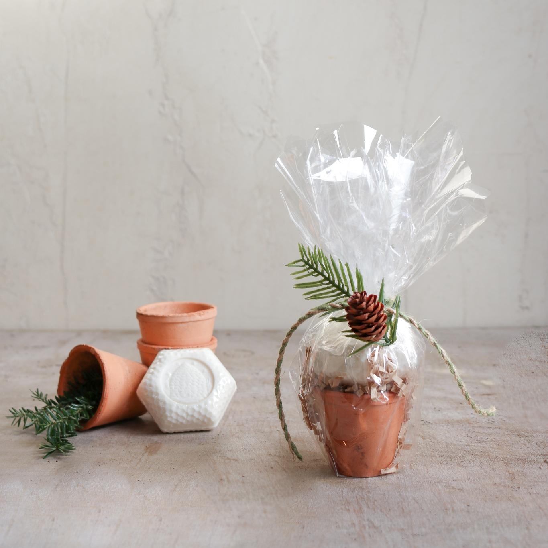 french goat milk soap holiday gift set