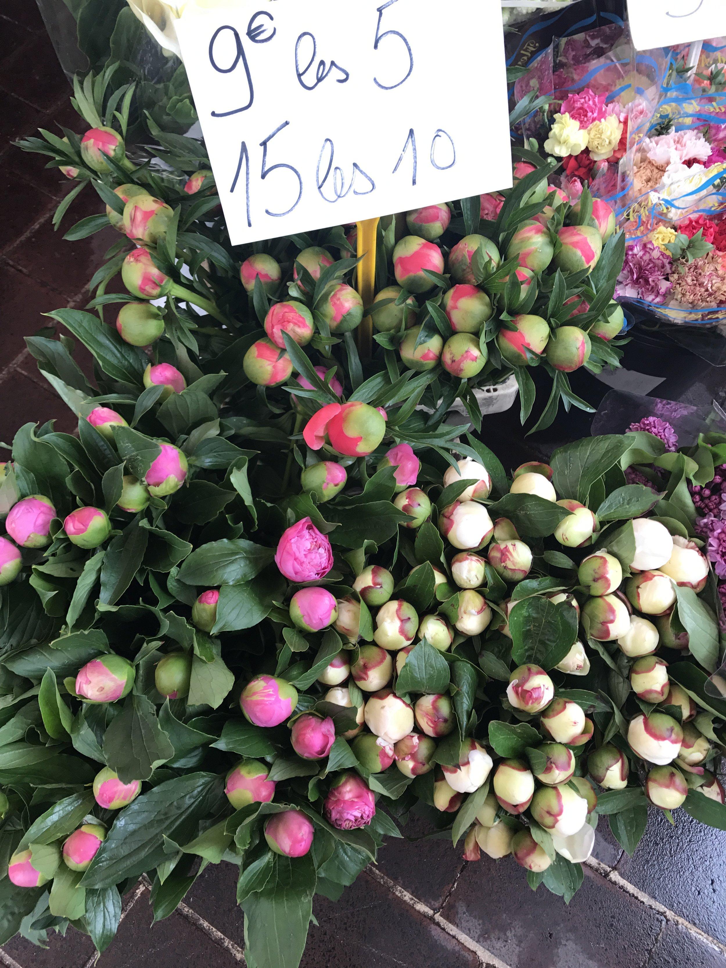 Parisian-florist-peony-pink-red-peonies.jpg