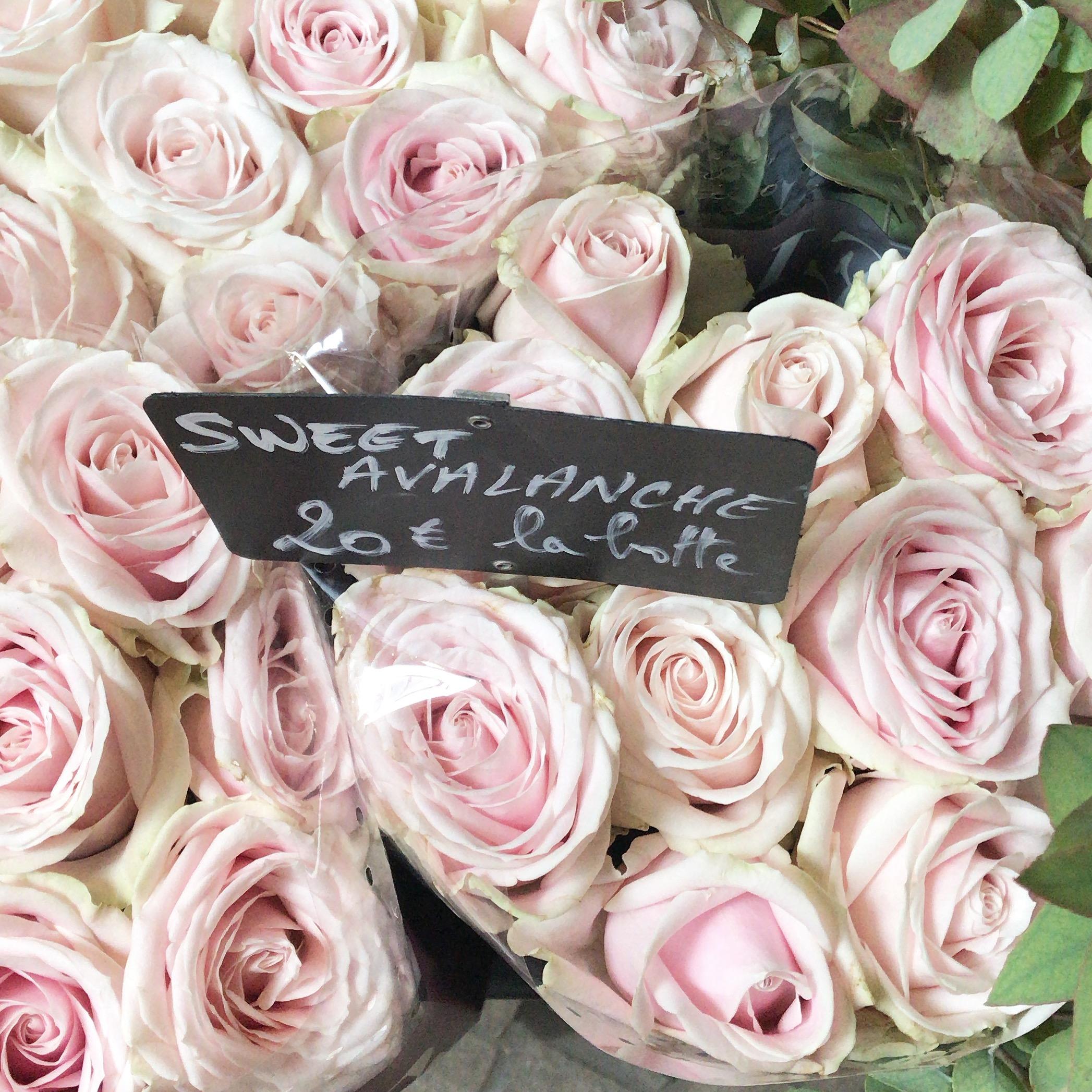 paris-flower-shop-pink-roses.jpg