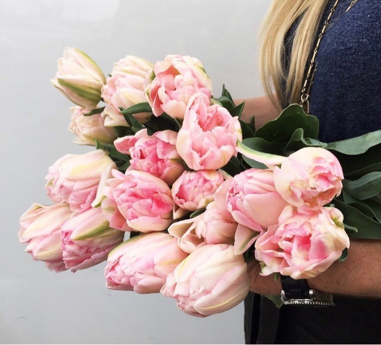double-peony-tulips-sandra-sigman-garden.jpg