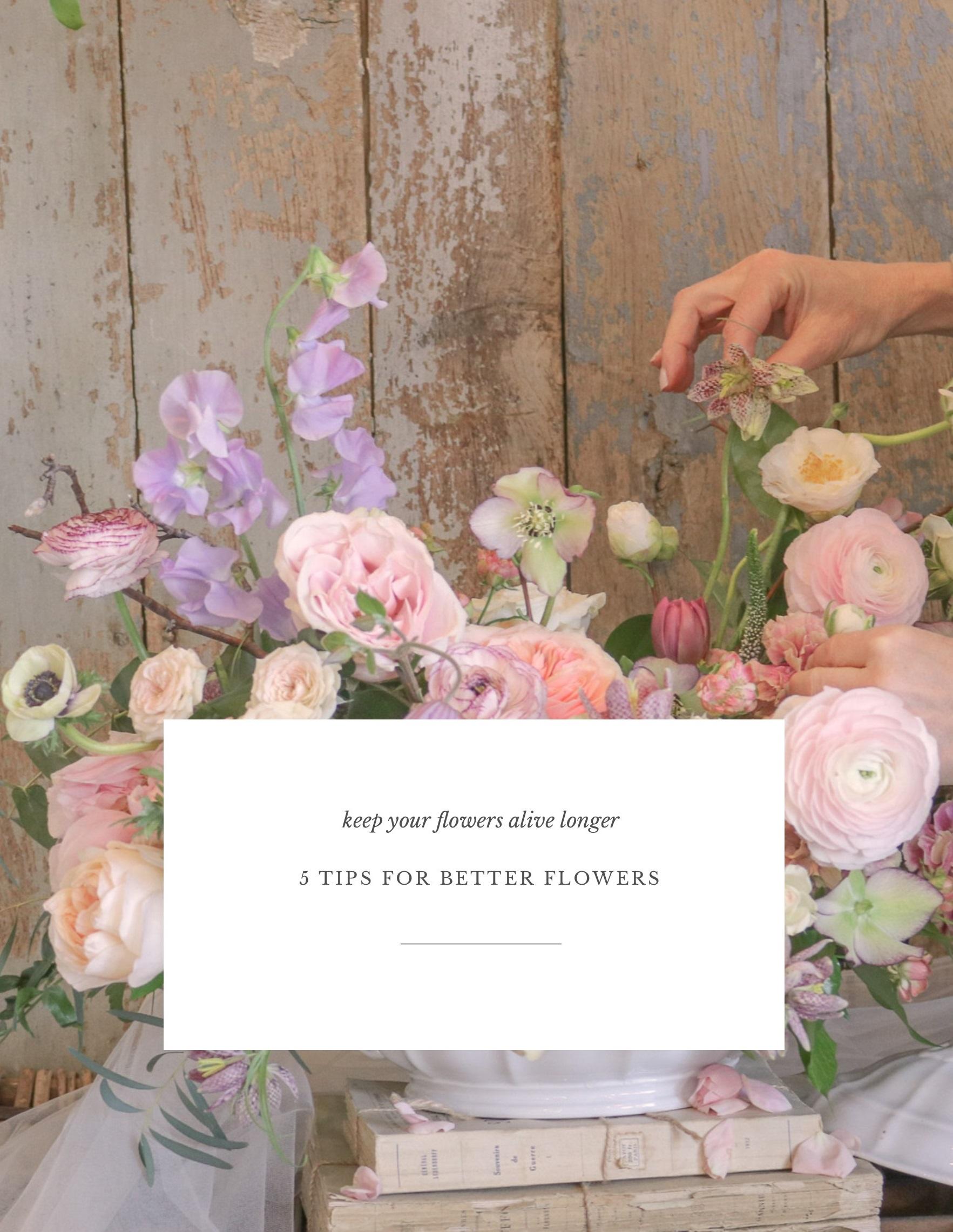 flower care 1.jpg