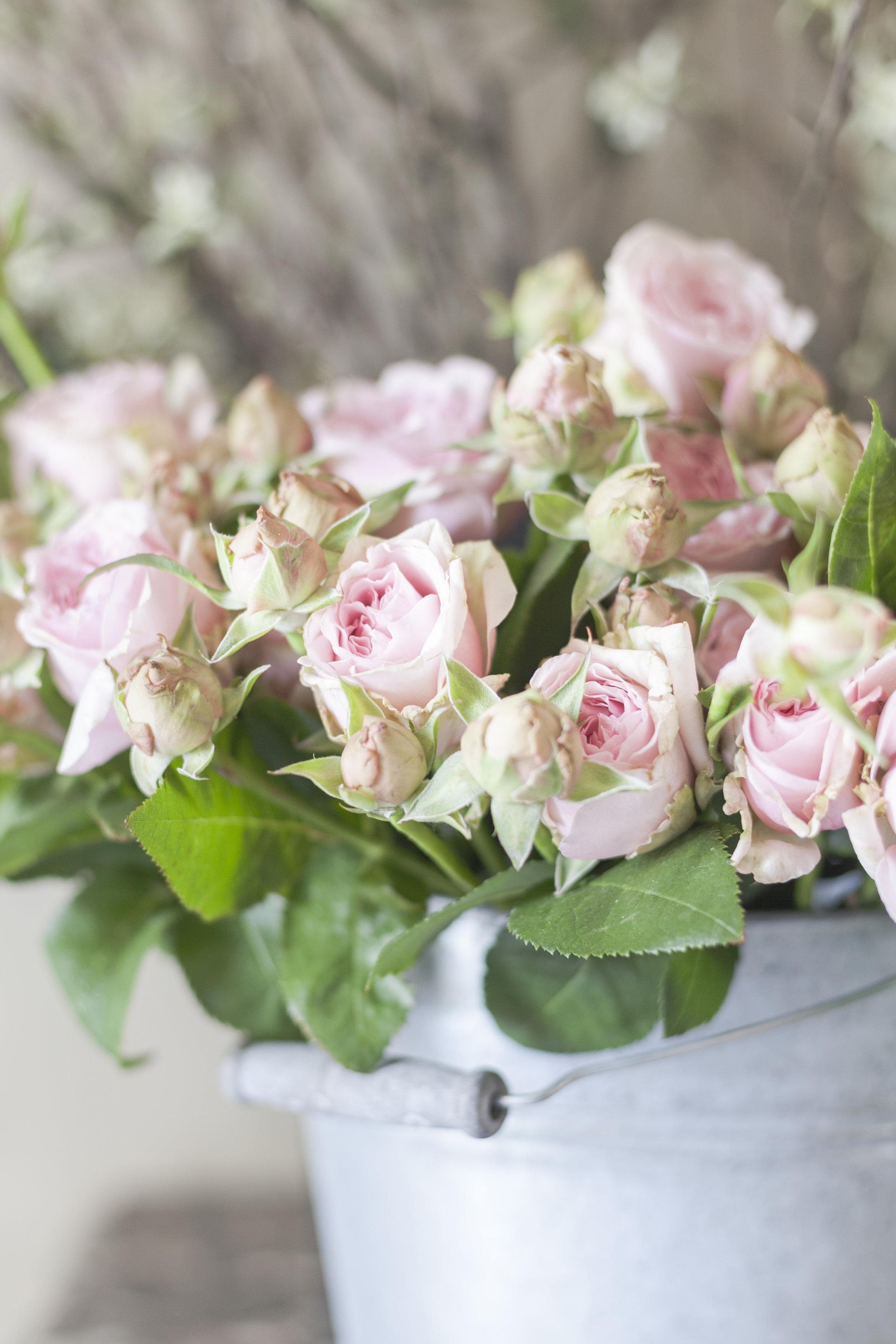 france-provence-floral-workshop-sandra-sigman-pink-roses.jpg