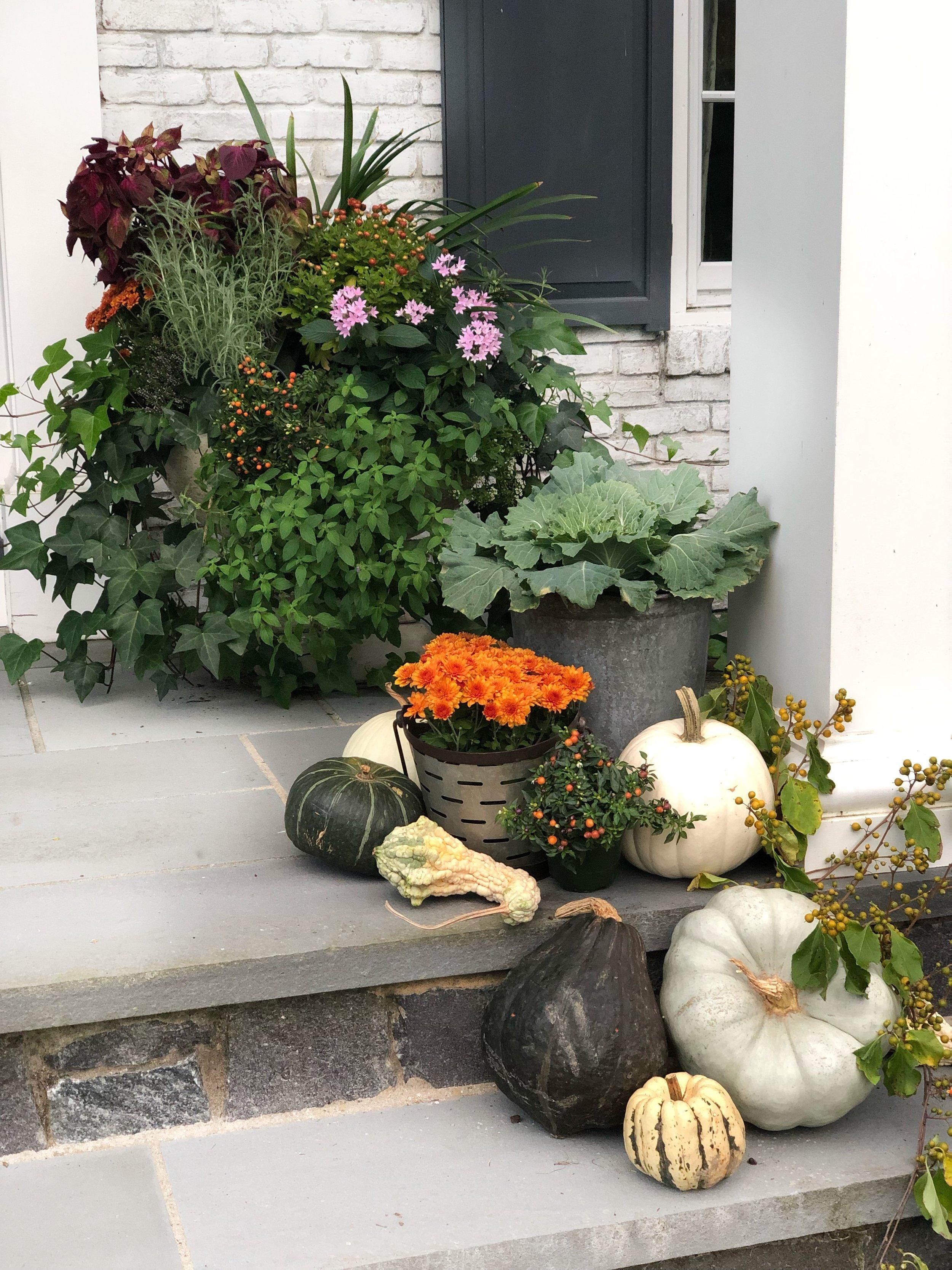 fall-decor-pumpkins-mums-squash.jpg