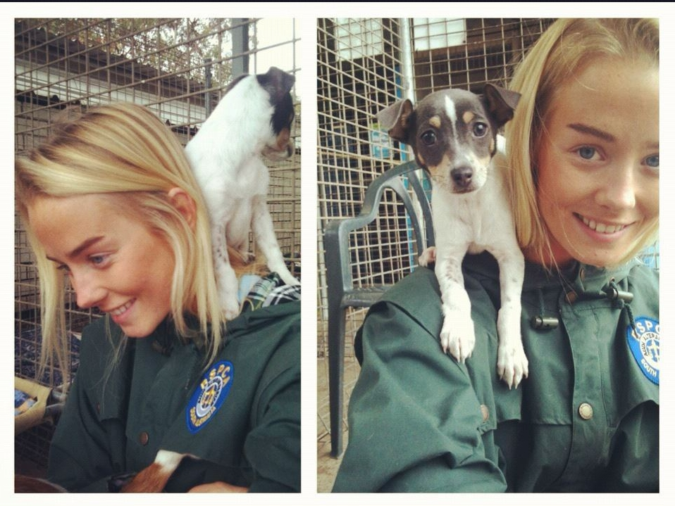 Brinkley volunteered at RSPCA throughout schooling and university as a TLC volunteer for rescued dogs and cats