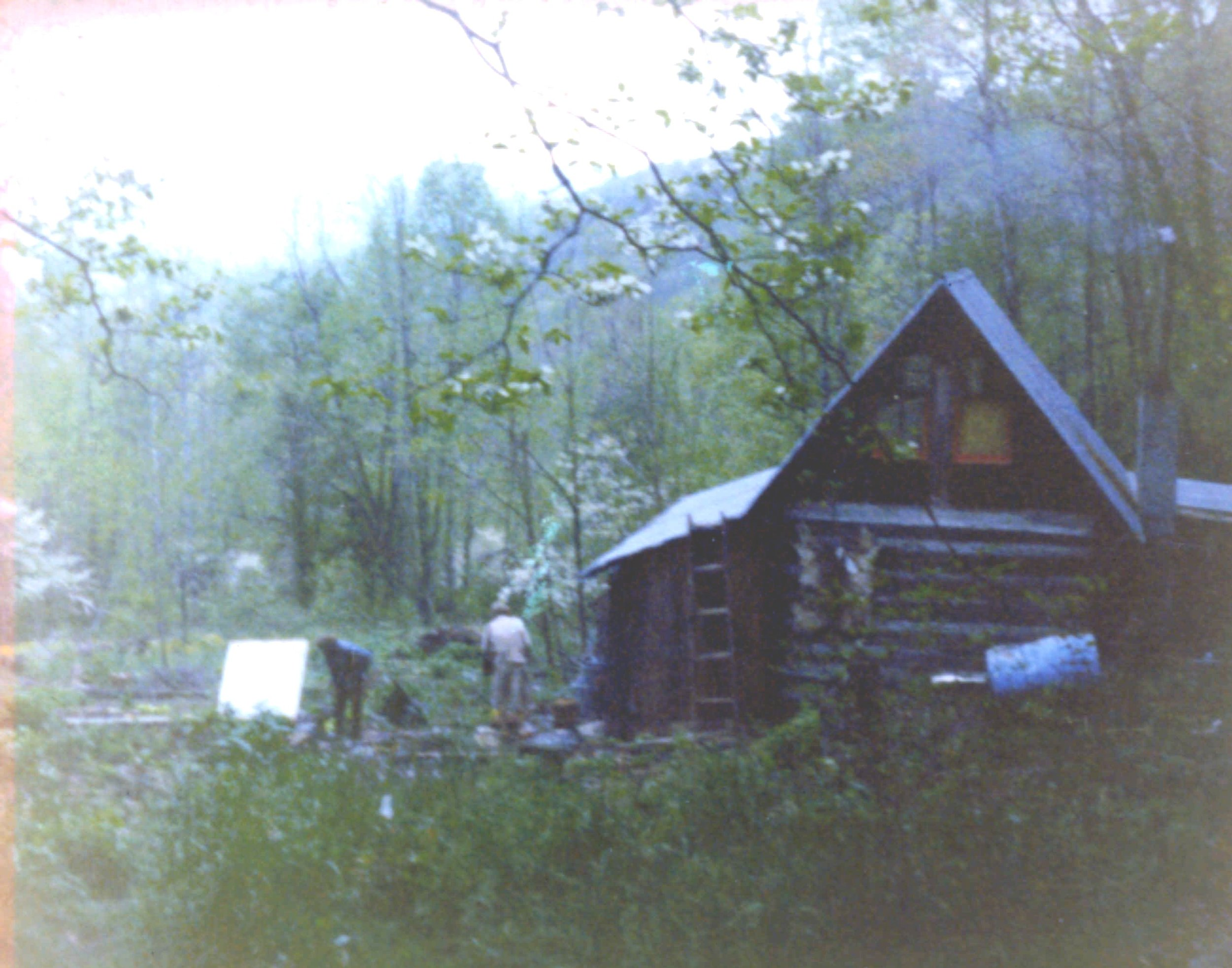 1974a old cabin shot.JPG