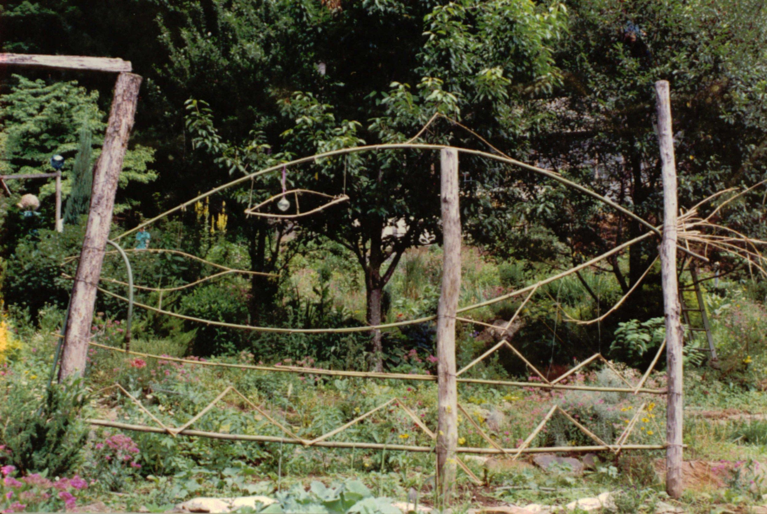 1989 bamboo trellis.JPG
