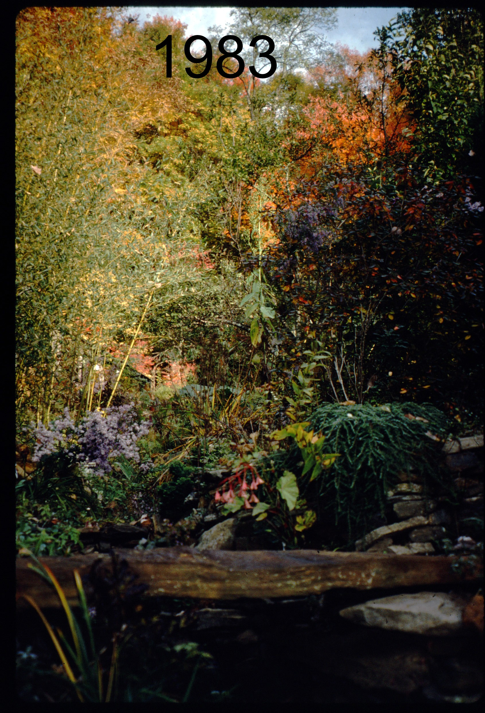 1993 stone bridge - N, autumn.jpg