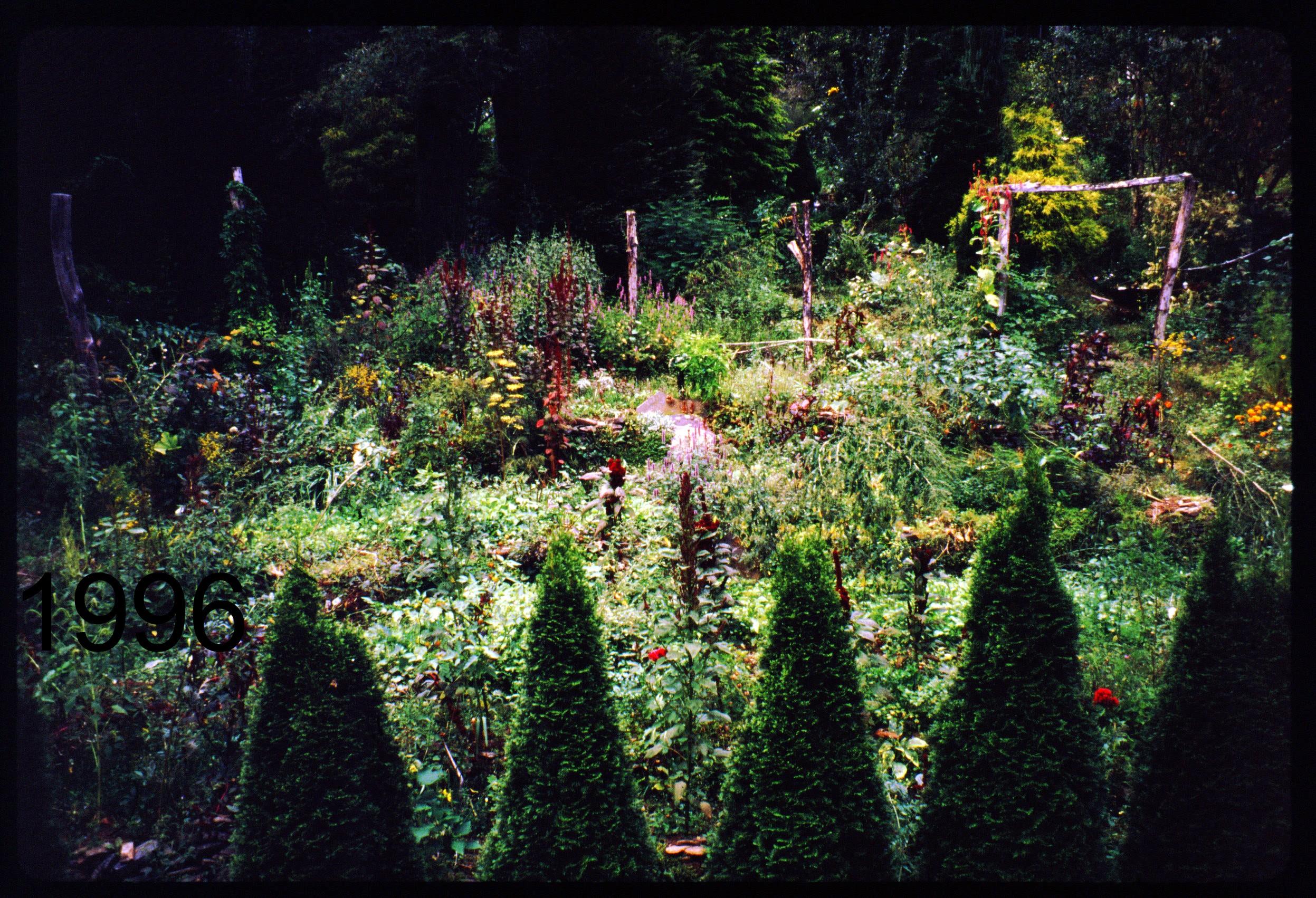 1996 view N from coop.jpg