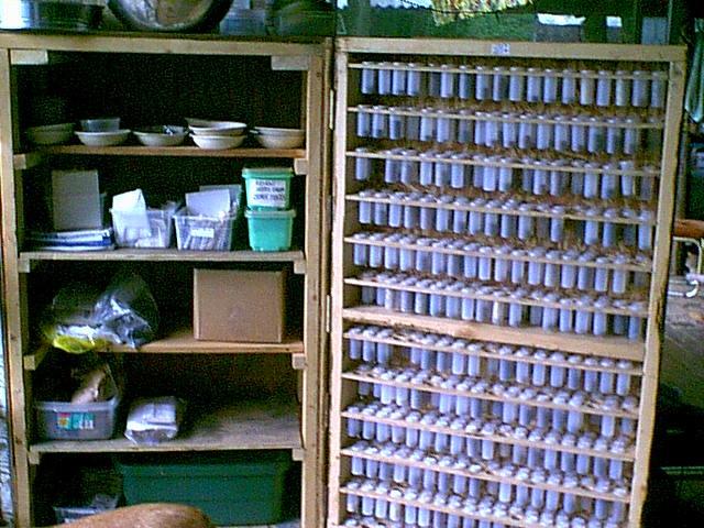 2000 seed cabinet 2.JPG