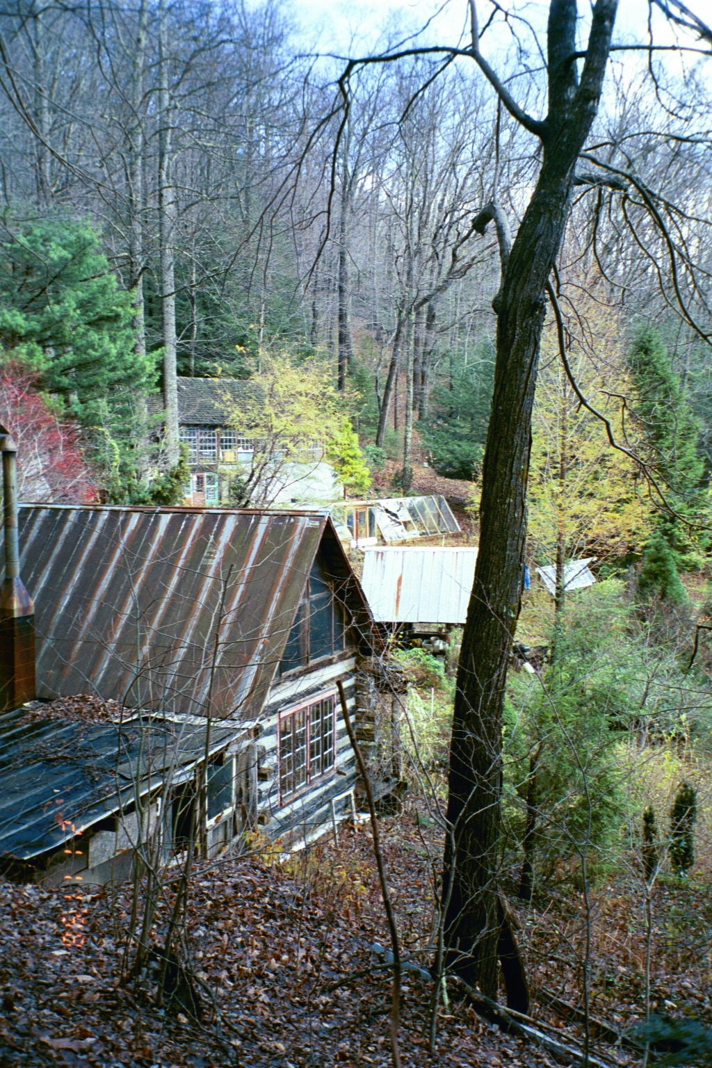 2003 cabin slope - pavil.JPG