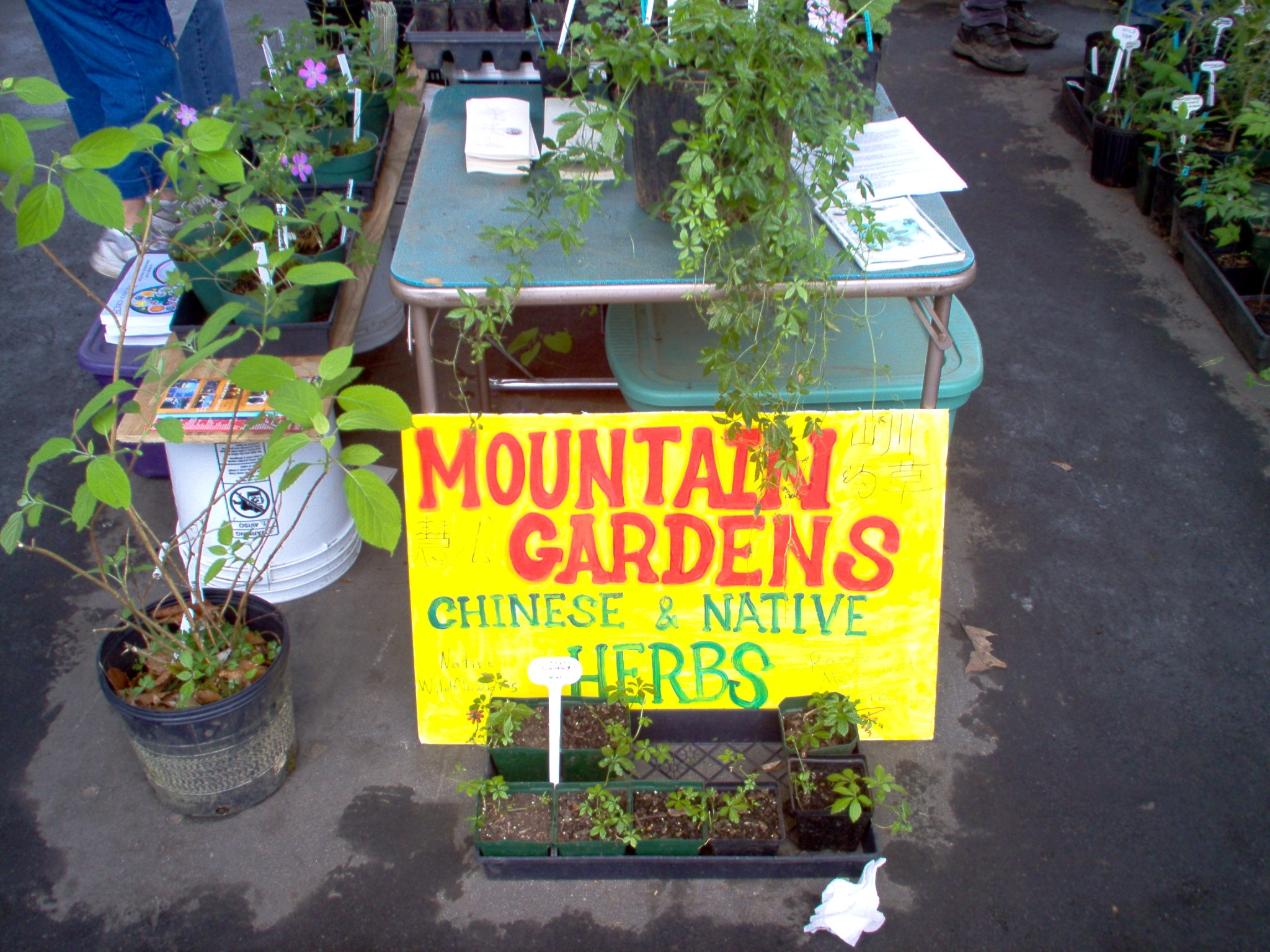 2004 herbfair display.JPG
