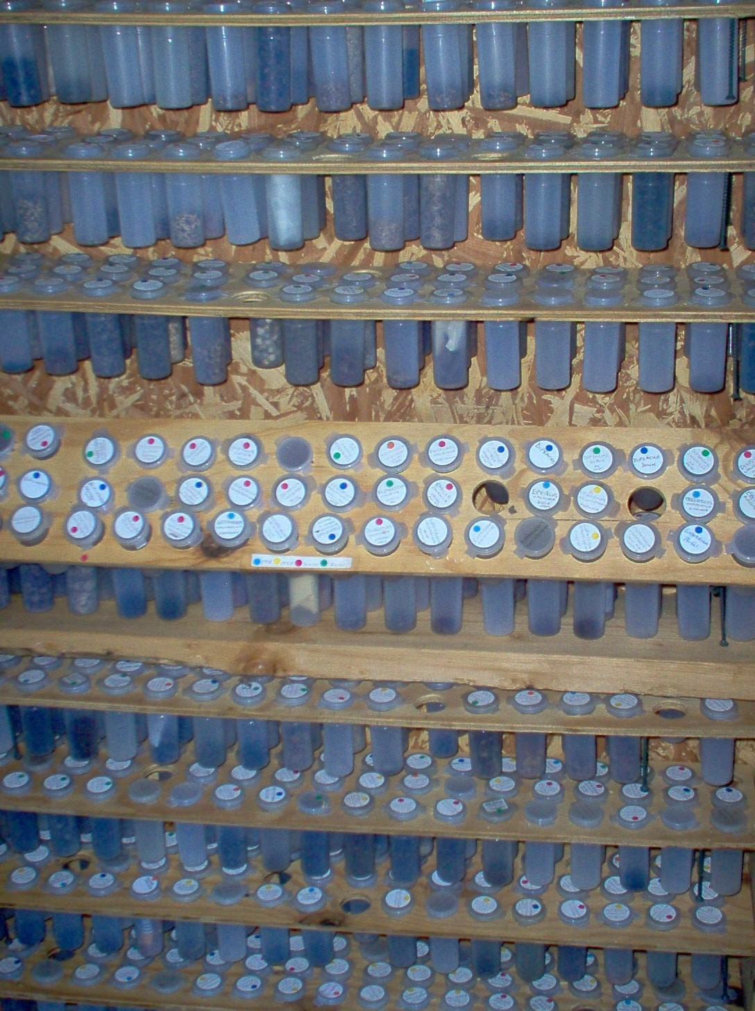 2004 seed cabinet.JPG