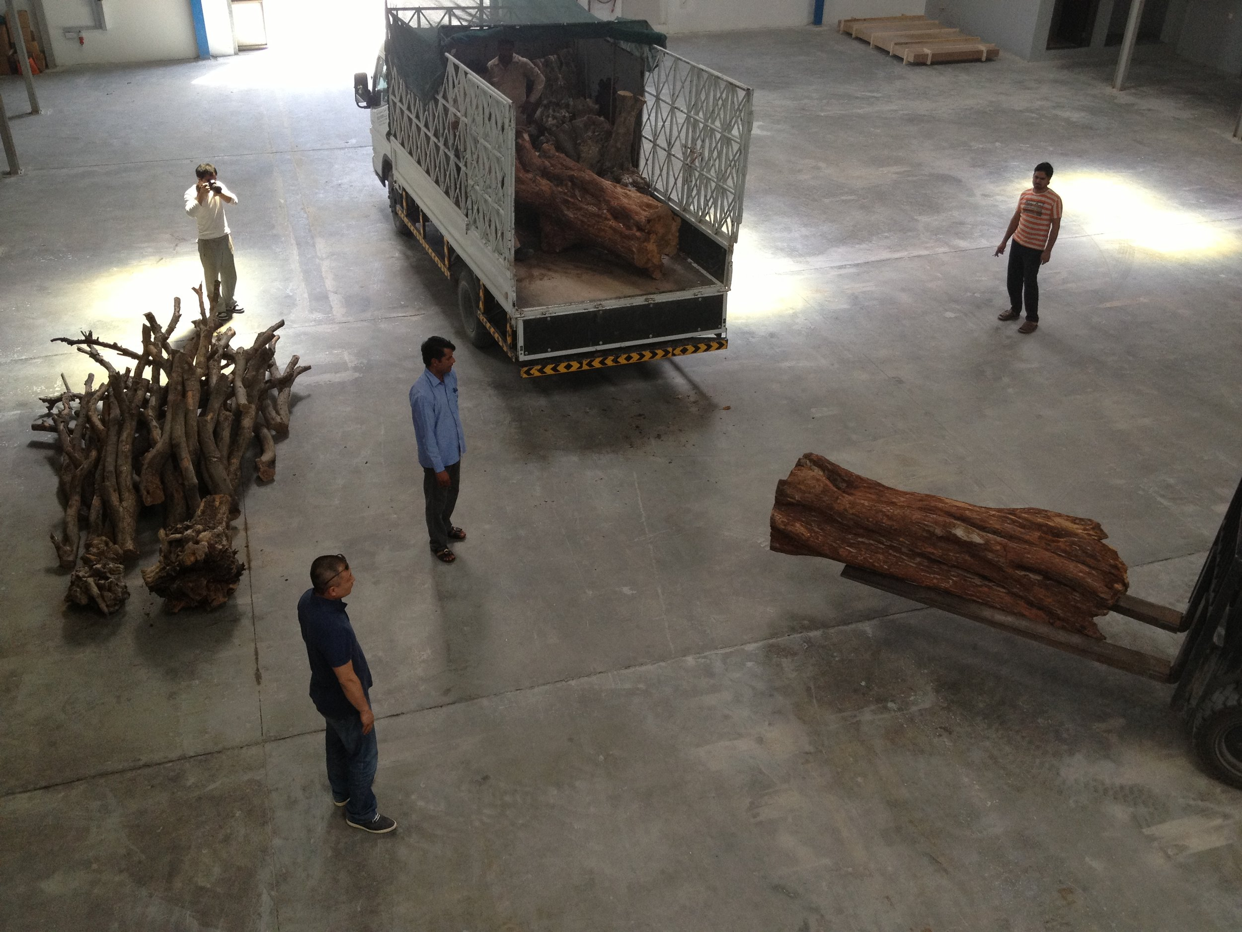 Tree trunks and branches arrive at the studio