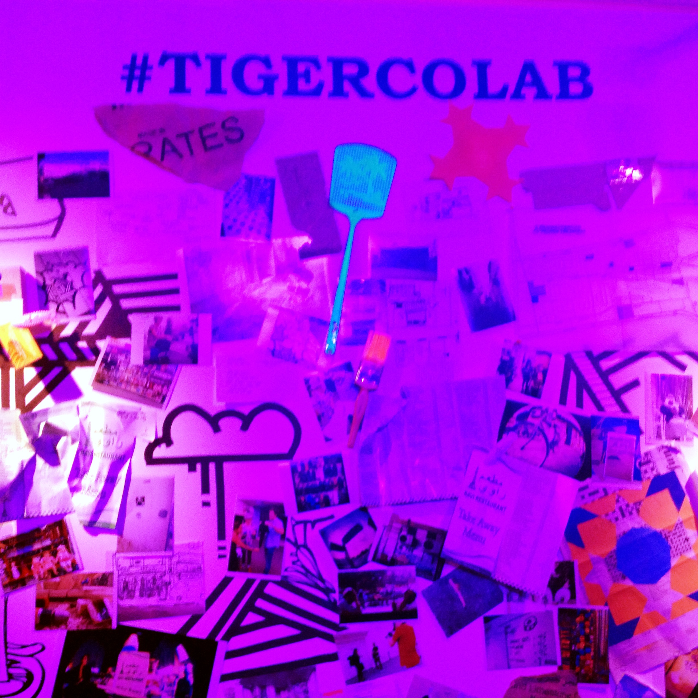 #tigercoLab