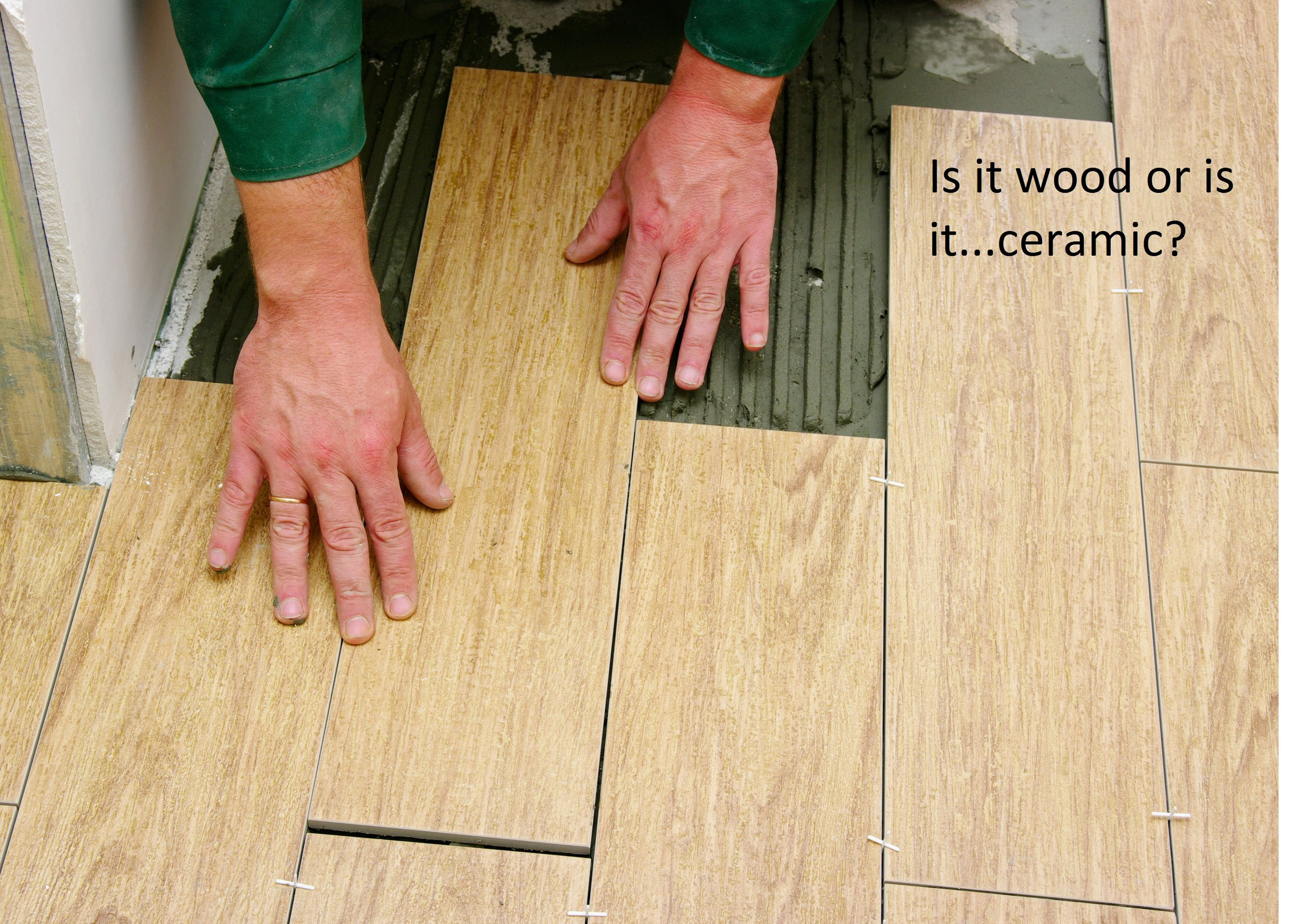 is it wood or is it ceramic.jpg