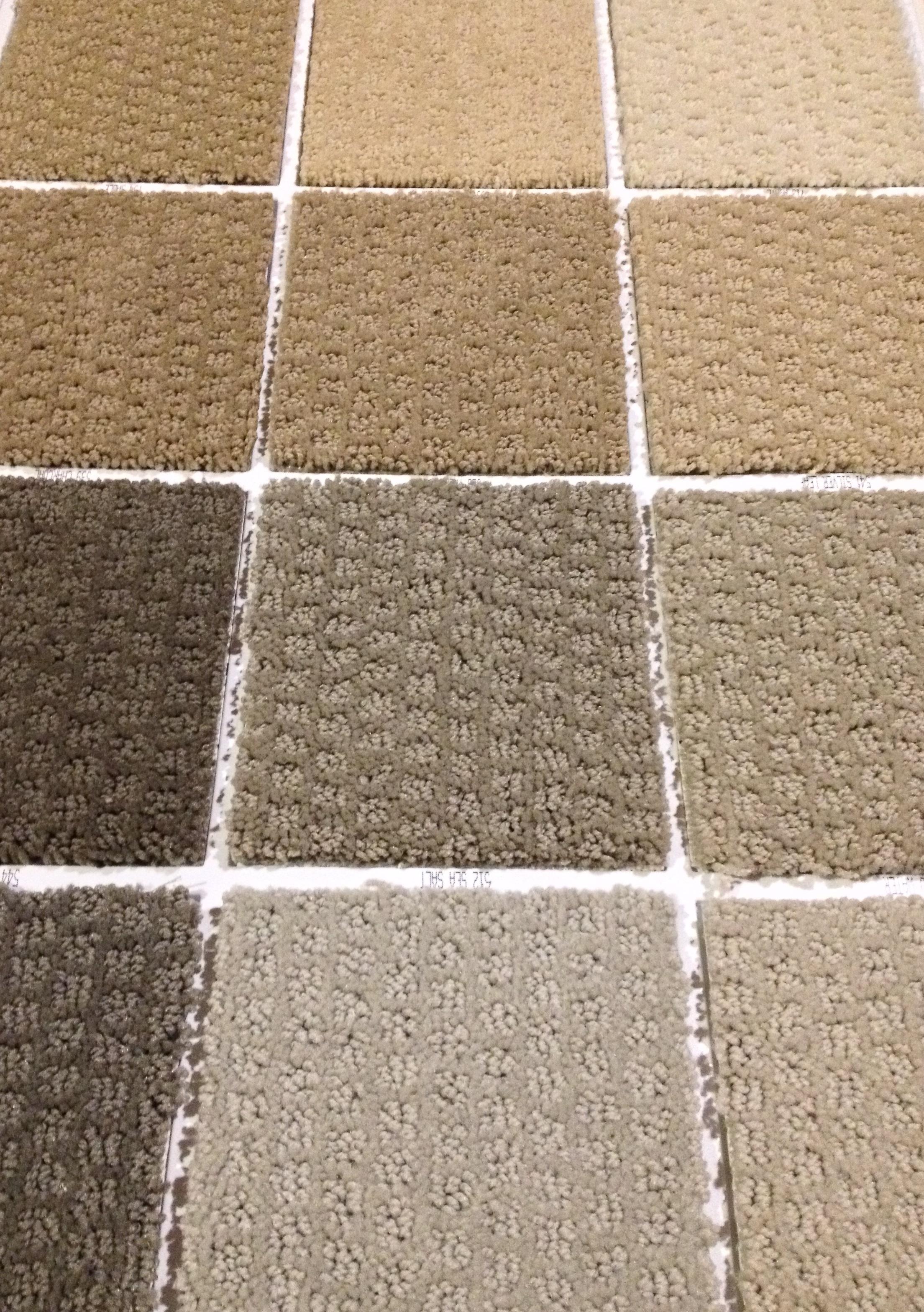 Shaw-GR colors shown Cut & Loop Nylon