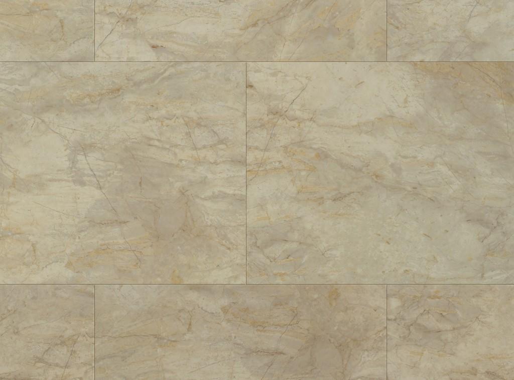 USF CT PT Anique Marble