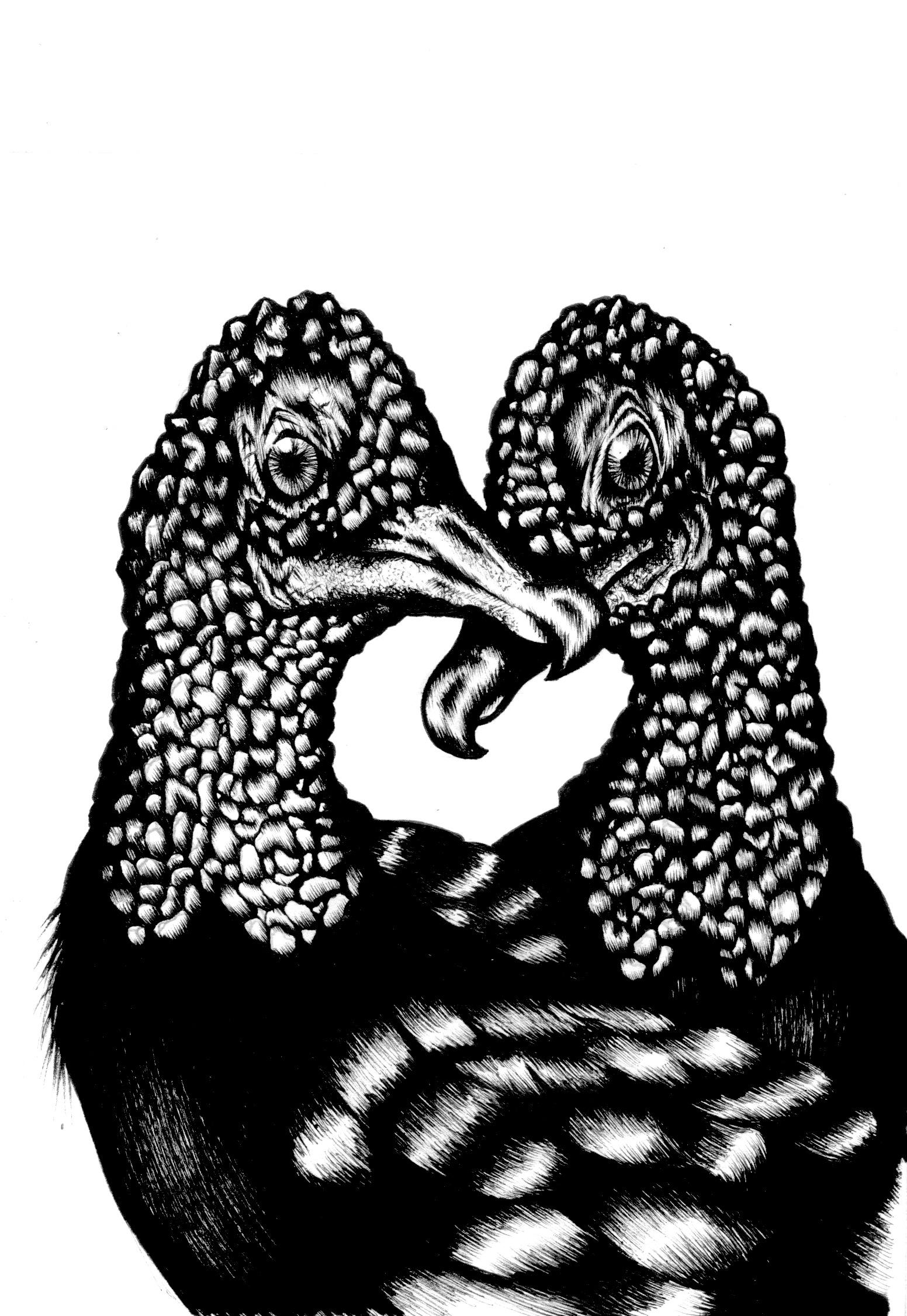 Black Vultures  (2016)  Birds that Stay Together, Forever   Ink