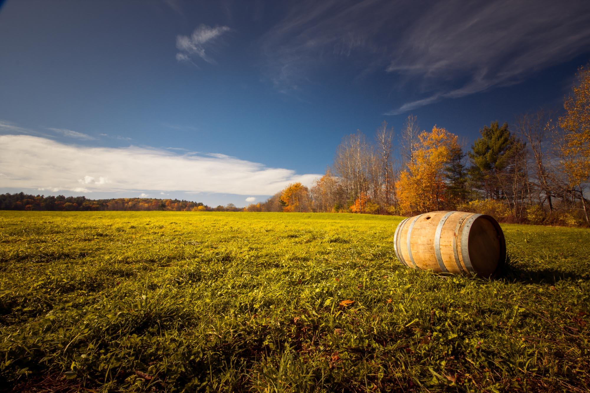 Willows Awake - Winery & Vineyard