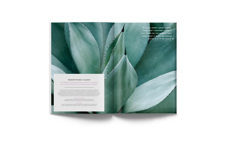cos-brochure-spread2.jpg