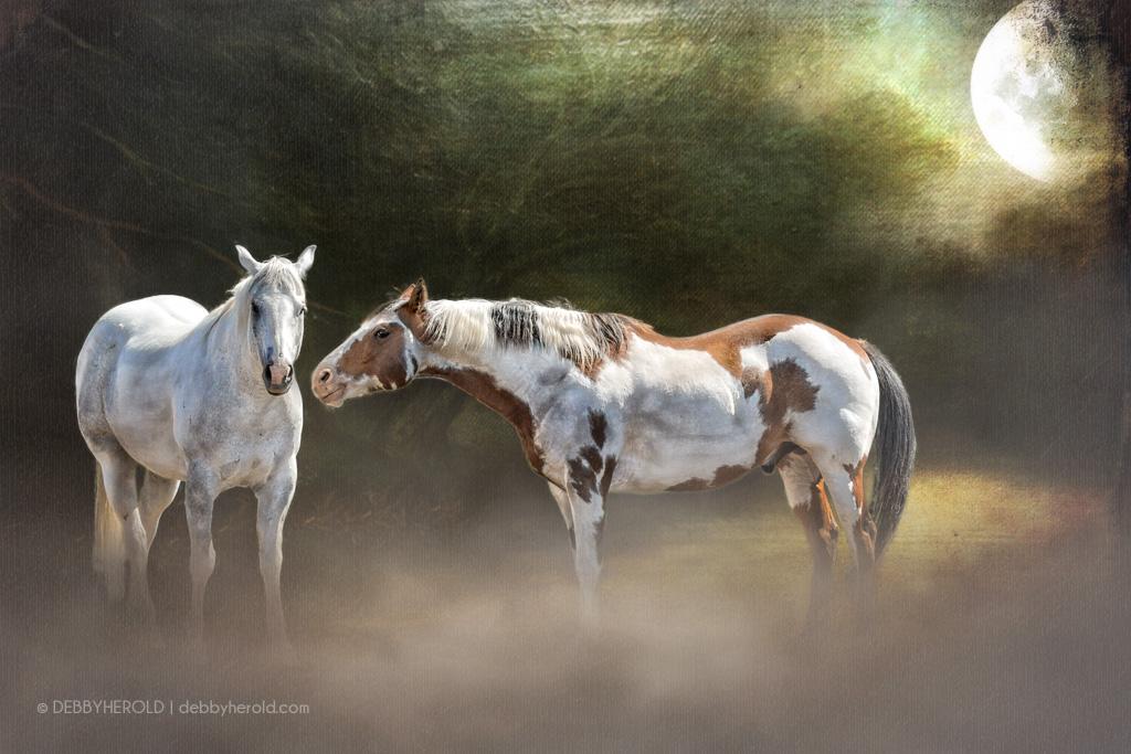 Fine art portrait of spirit horses in moonlight