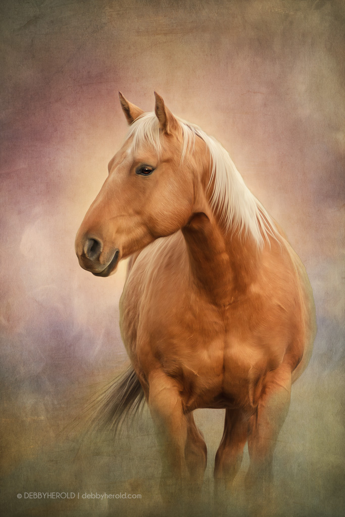 Palamino horse portrait
