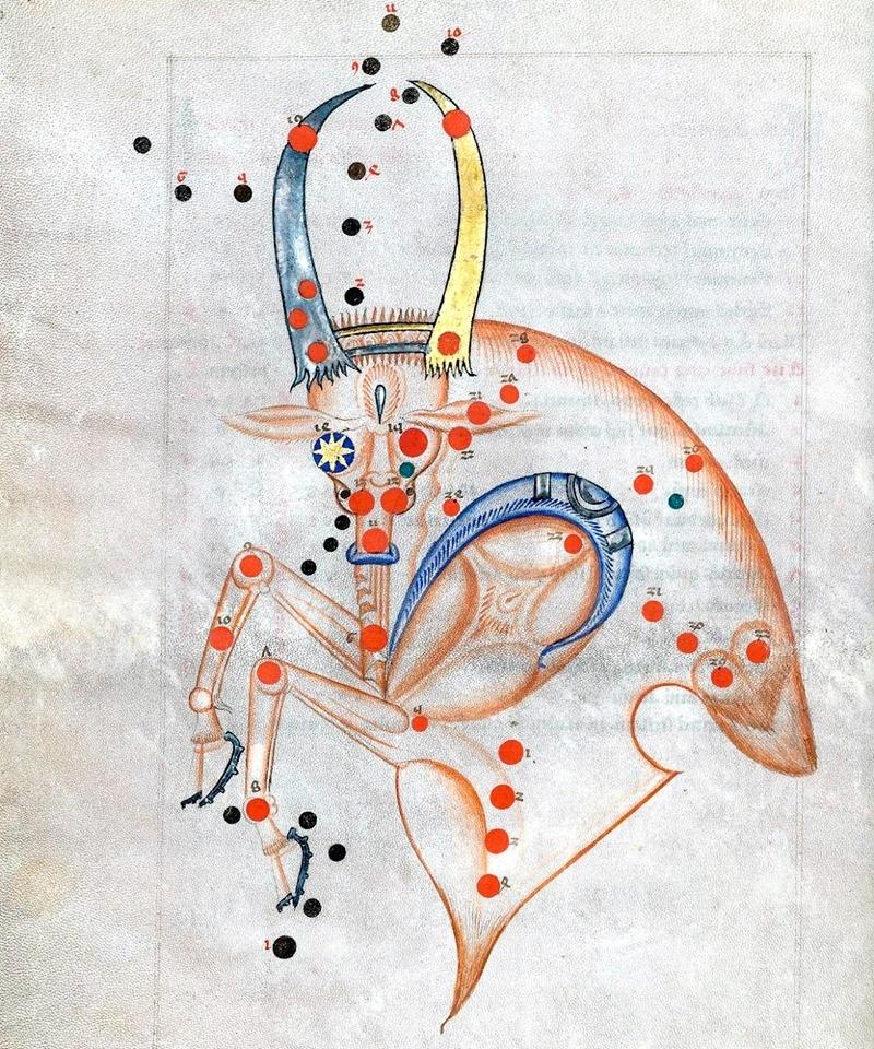 The constellation Taurus from 'Sufi Latinus' (Latin translation of 'Kitāb al-kawākib al-thābita' of 'Abd al-Rahmān al-Ṣūfī), Bologna 1250-1275. From:  Celestial Archive Advent Calendar
