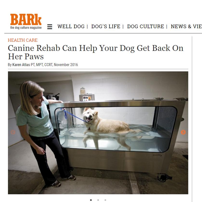 The Bark Magazine Take 3.png