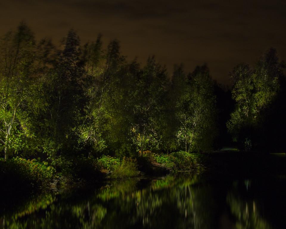 Éclairage paysager,  étang