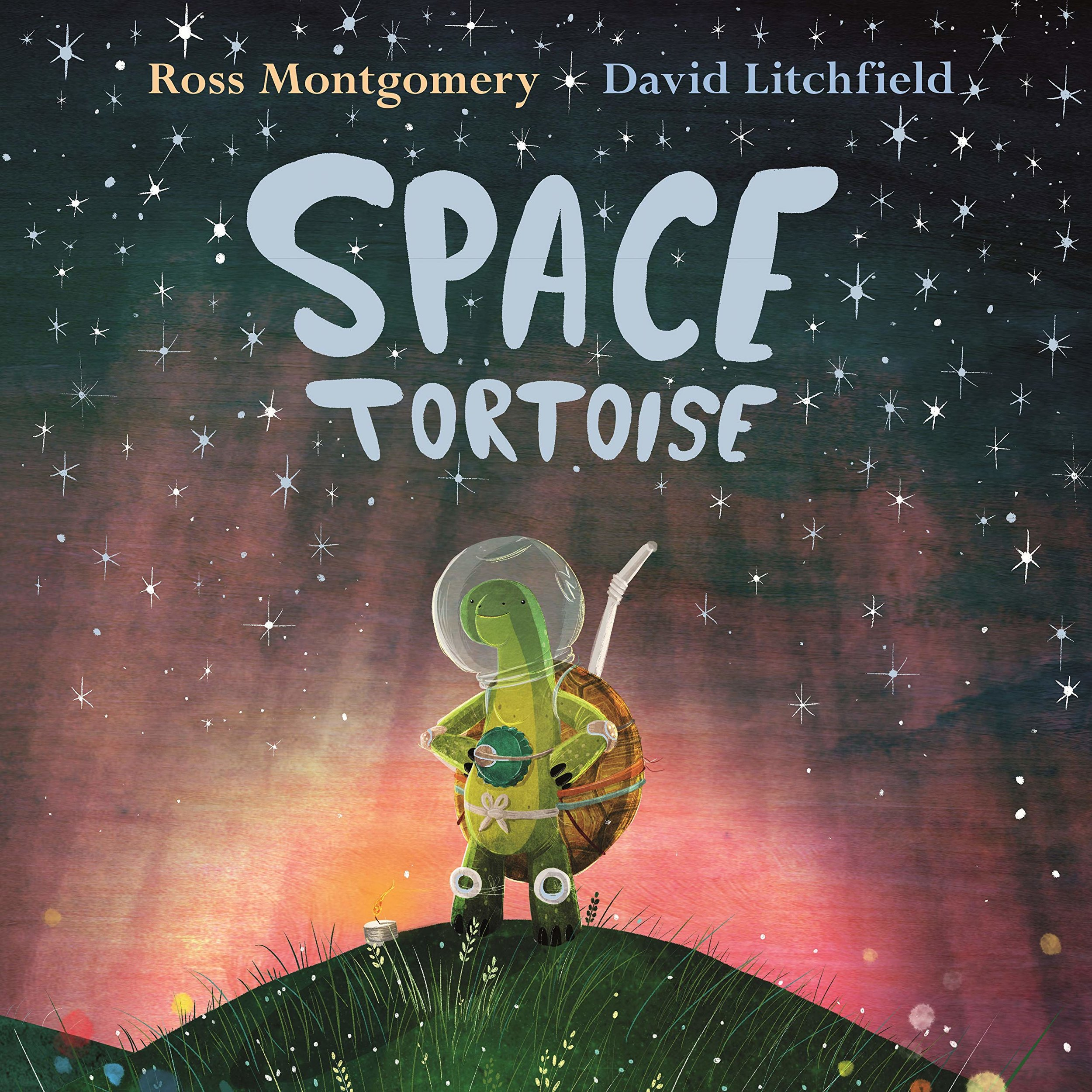 Space tortoise.jpg